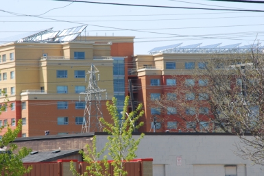 Solar Panels, Hamilton-KP
