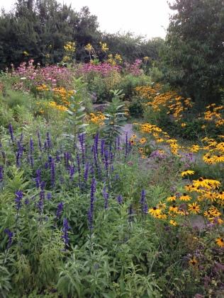 Butterfly Garden, Dundas, Ontario