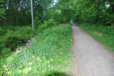 Spencer Creek Trail, Dundas, Ontario K. Perrotta